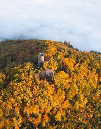 Traversée du Massif des Vosges - Etape 12 - Châtenois - Ribeauvillé - image