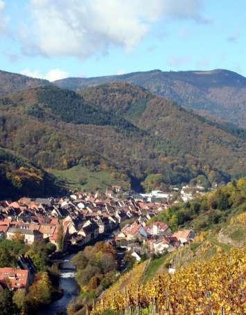 Traversée du Massif des Vosges - Etape 17 - Thann - Ballon d'Alsace - image