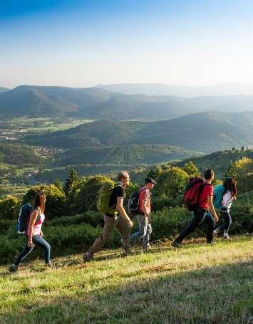 Traversée du Massif des Vosges à pied - Wissembourg / Belfort - image
