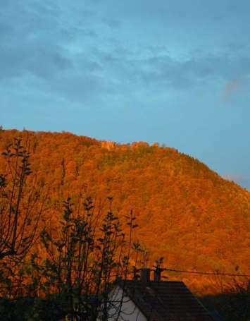 Grande traversée pédestre des Vosges au fil des GR - image