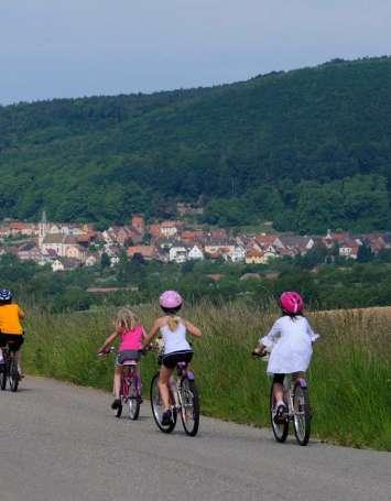Circuit cyclotouristique : Au fil du pays de Niederbronn-les-Bains - image
