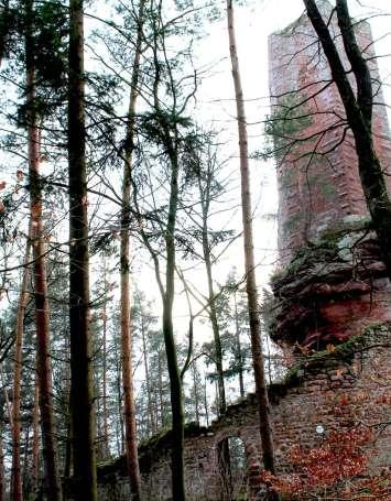 Château du Wineck-Schmalstein - image