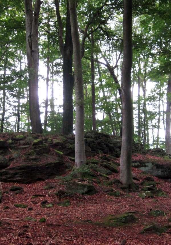 Circuit de randonnée vers le camp celtique
