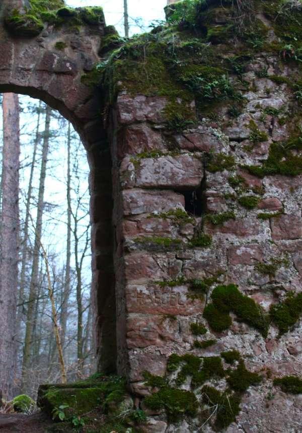 Circuit de randonnée aux châteaux du Schoeneck et du Wineck