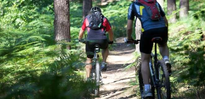 Mountainbike-Tour Taubensee- image
