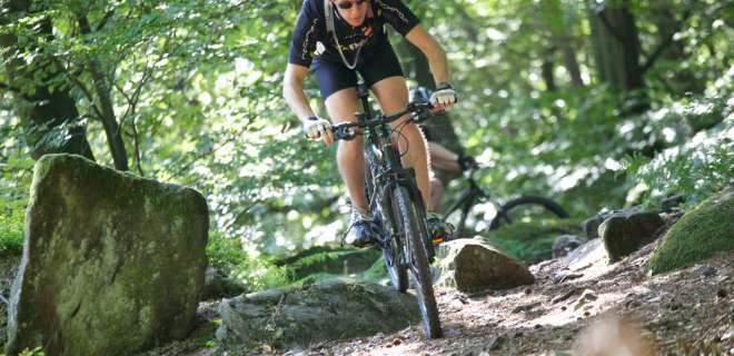 Mountainbike-Tour Grossen Wintersberg- image