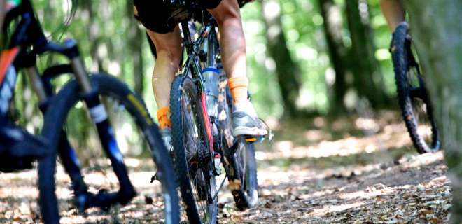 Mountainbike-Tour Wintersberg und Wasenkoepfel- image