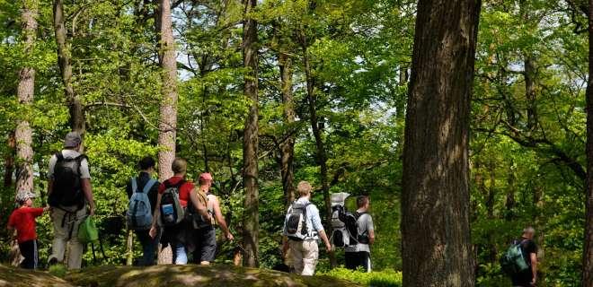 Randonnées pédestres en Alsace : Sentier de la Ligne Maginot- image