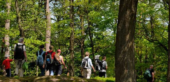Wandern im Elsass : Wanderweg um die Maginot Linie- image