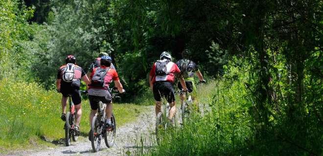 Vosgesenüberquerung mit dem Mountainbike : Obersteinbach bis Oberbronn- image