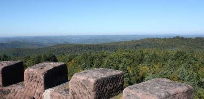 Randonnée au détour du Breitenwasen- image