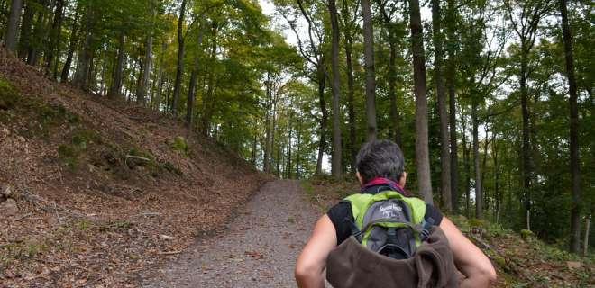 Spaziergang um die Schlösser in Windstein- image