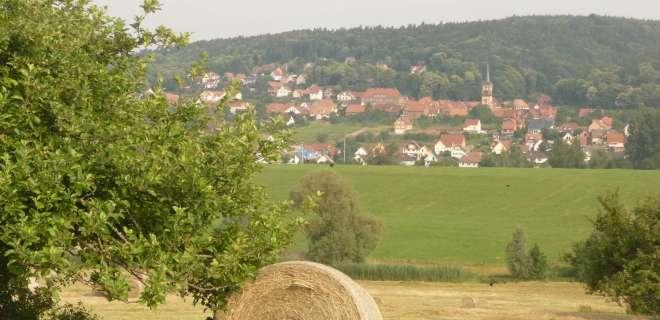 Circuit de promenade : le Sonnenberg- image