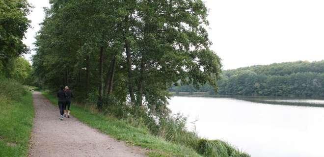 Radtouren rund um die Sations Vertes: von Morsbronn-les-Bains nach Niederbronn-les-Bains- image