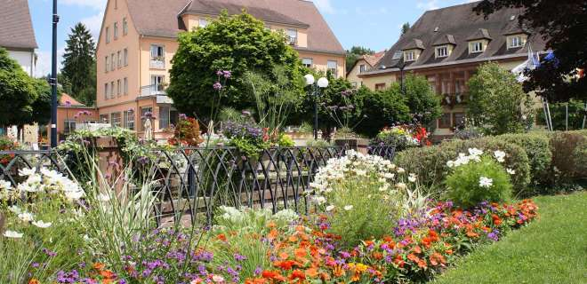 Itinérance à vélo autour des Stations Vertes : de Lembach à Niederbronn-les-Bains- image