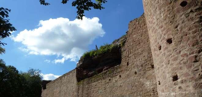 Visite guidée du château du Schoeneck- image