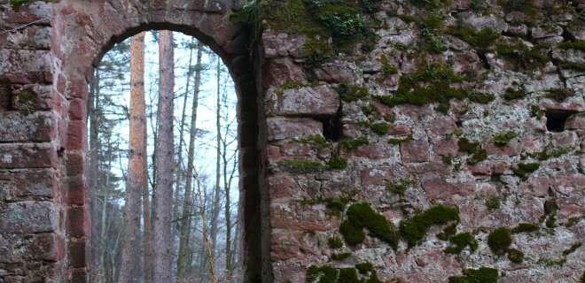 Circuit de randonnée aux châteaux du Schoeneck et du Wineck- image